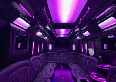28 passenger Limousine Bus #27
