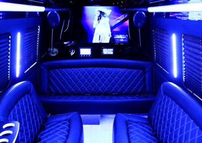 14 passenger limo van