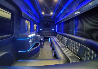 11 passenger limo van